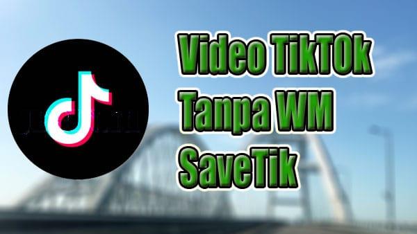 Cara Download Video TikTok Tanpa Watermark di Savetik
