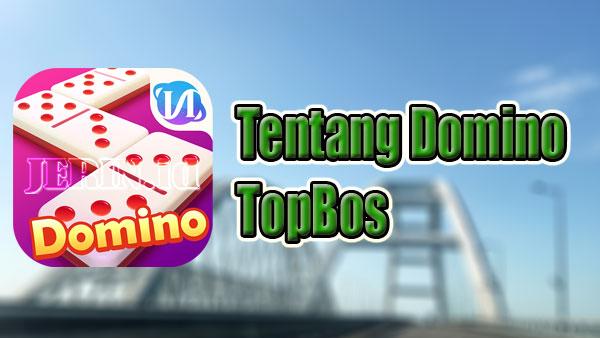 Tentang Domino TopBos